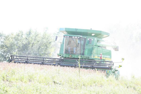 farming 9-28-10