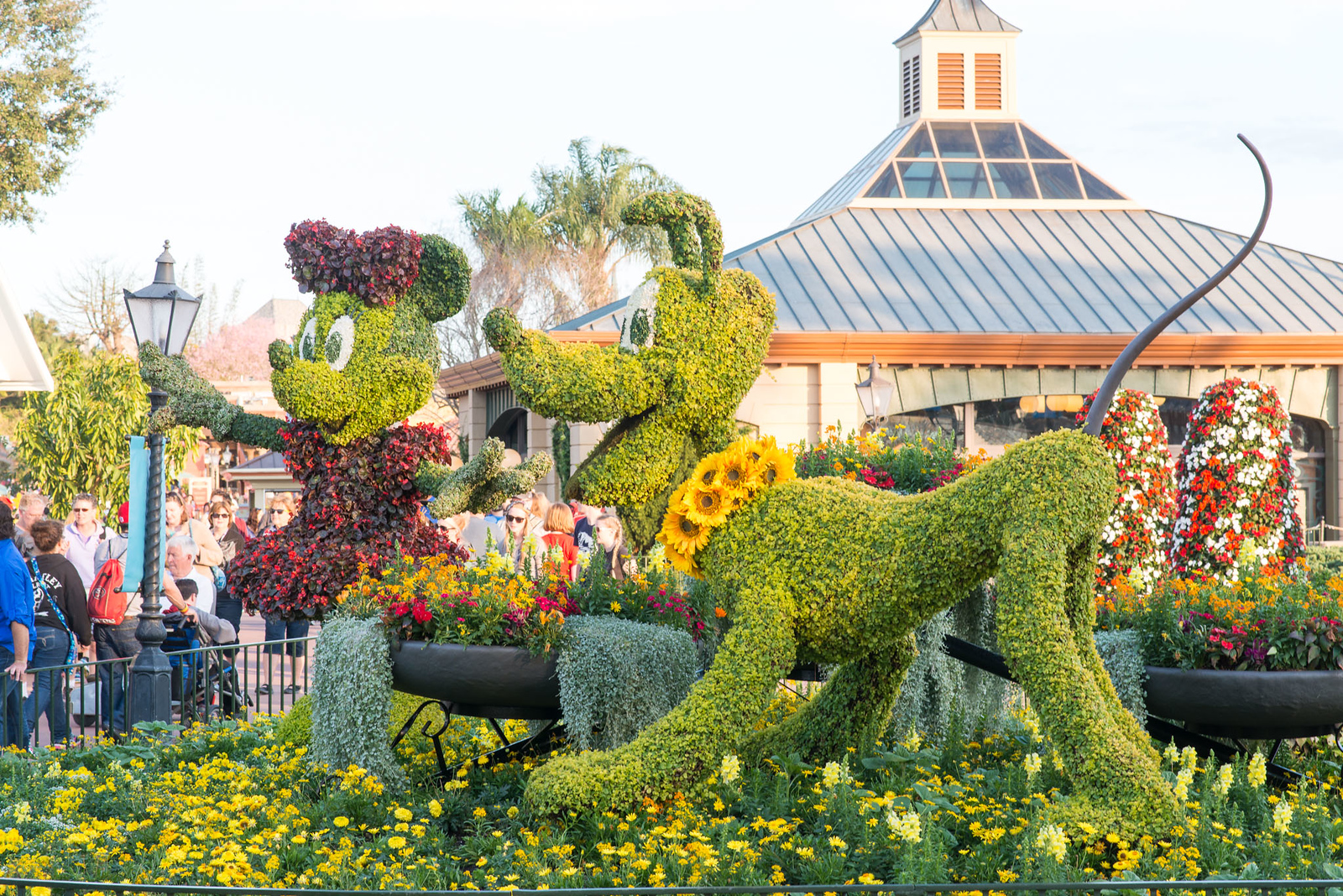 Minnie & Pluto Topiaries - Epcot Flower & Garden Festival 2016