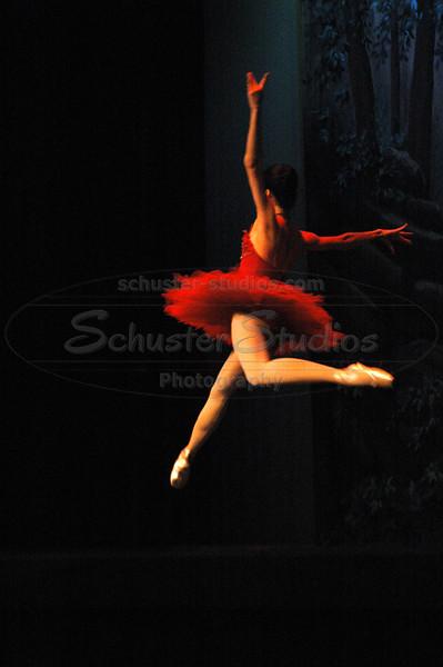 The Firebird 2009 presented by Corpus Christi Concert Ballet