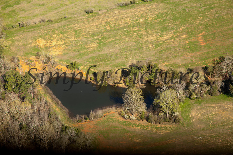 Neches River from the Air  023 copy