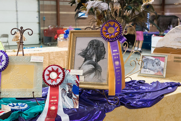 Richmond Afghan Hound Club - March 2015