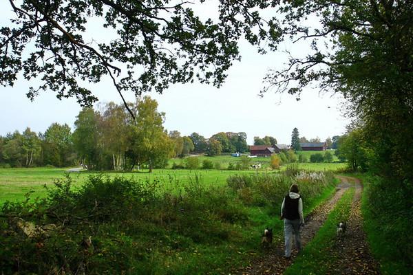 26 september 2011 - Huisje en korte wandeling