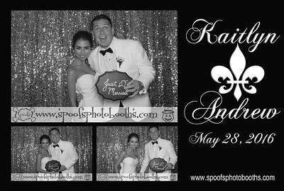 Kaitlyn + Andrew  Free Downloads