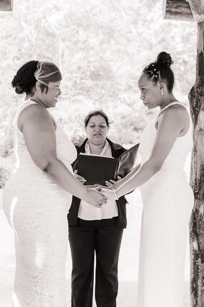 Central Park Wedding - Michelle & Shanay-15.jpg