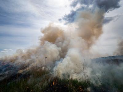 2016.EWay Controlled Burn