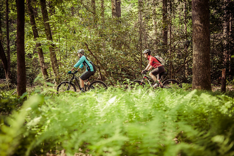 20140520_Mountain-Bikes-TurkeyPens-541.jpg