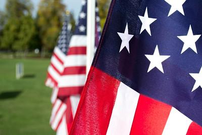 Veteran's Day Flag Display 2013