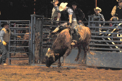 Rodeo 2009