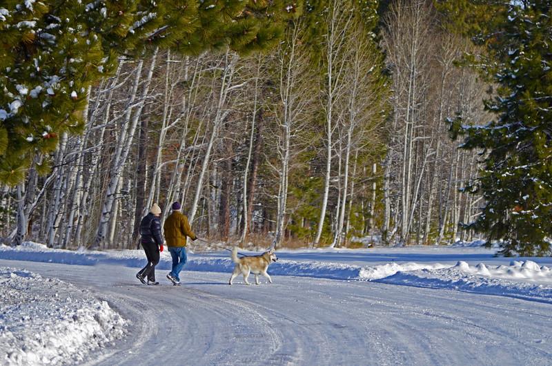 walking-in-a-winter-wonderland-at-BBR-KateThomasKeown12-12_DSC2521 copy.jpg