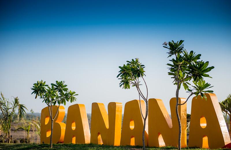 Banana Location-77.jpg