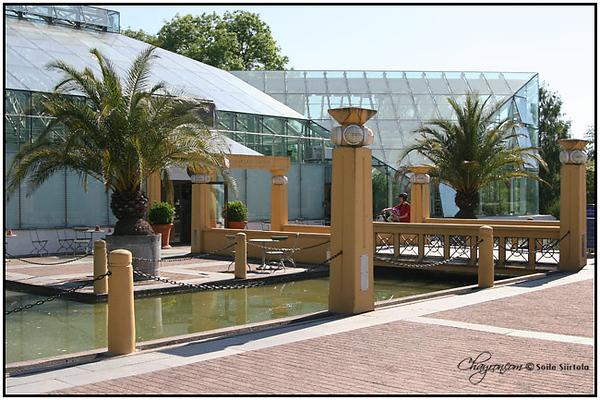 6 Juni 2008 - Bergianska trädgården