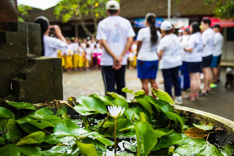Bali sc1 - 252.jpg