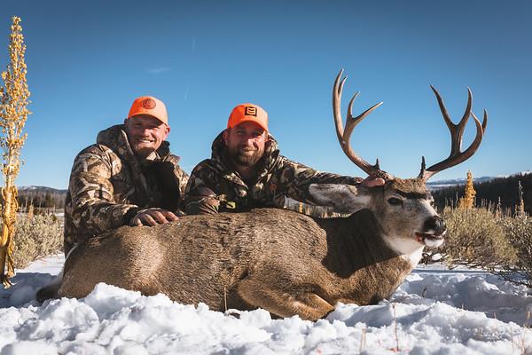 Phelps WY Mule Deer 11-19