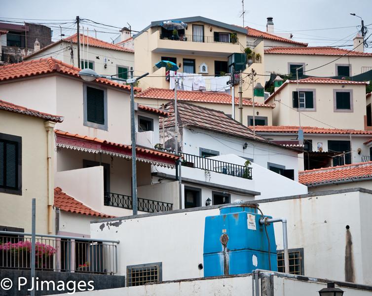 152-Camara_de_Lobos-3936.jpg