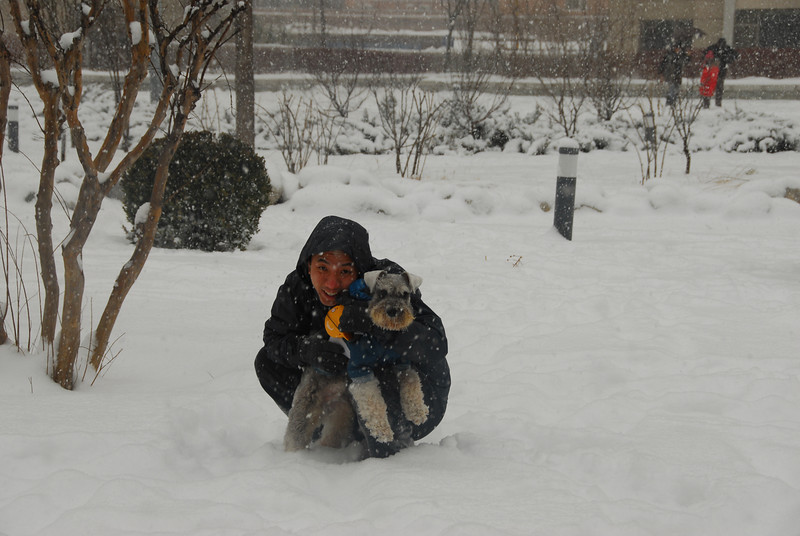 [20100103] 1st 2010 Snow in Beijing (48).JPG