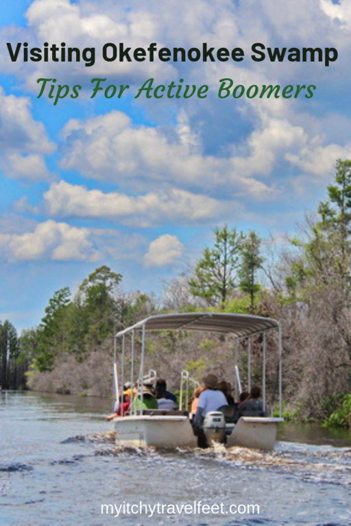 Tips for visiting Okefenokee Swamp