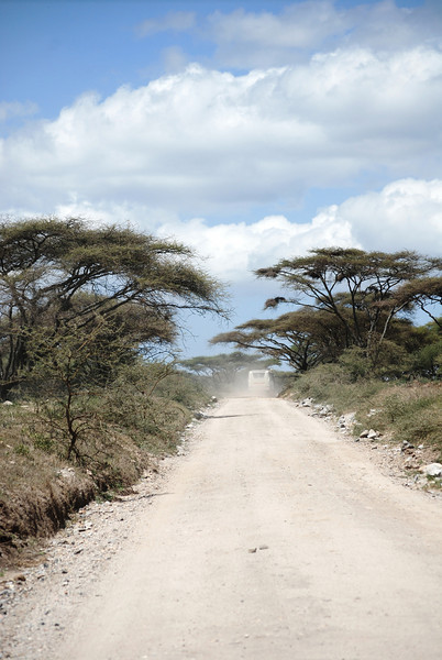 Serengeti (52).JPG
