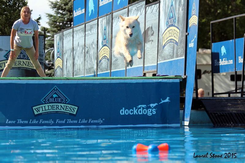 2015.8.5 Winnebago County Fair Dock Dogs (17).JPG