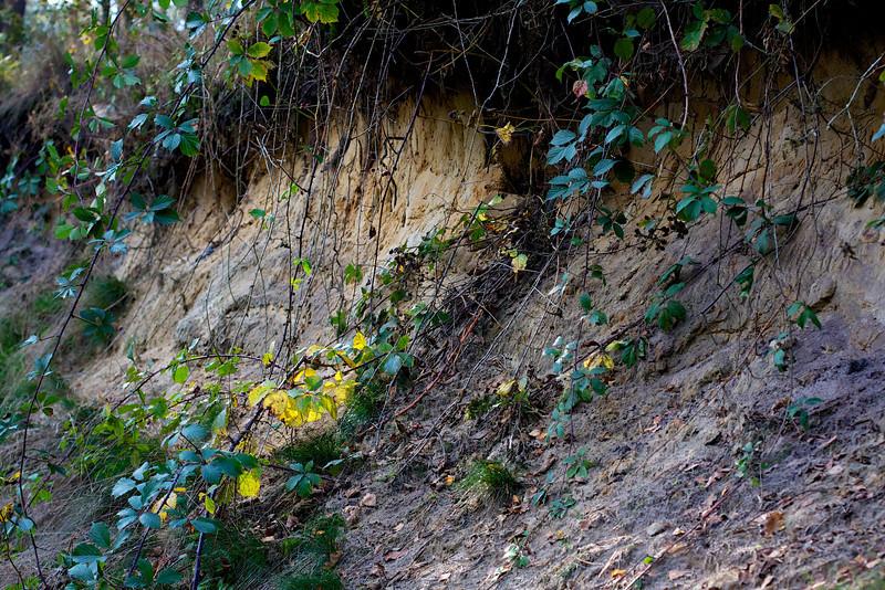 Geologisch aardmonument