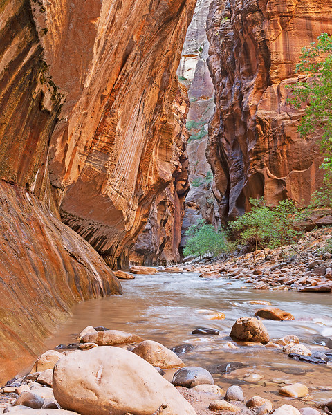 The Narrows, Zion National Park, USA