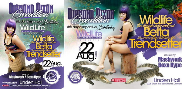 "DIAMOND DIXON ""WILDLIFE 2108""(10)"