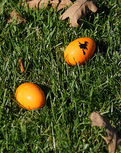 Candy Hunt on the Quad