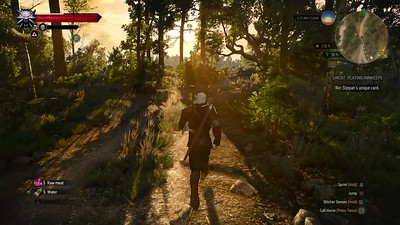 The Witcher 3(PC)