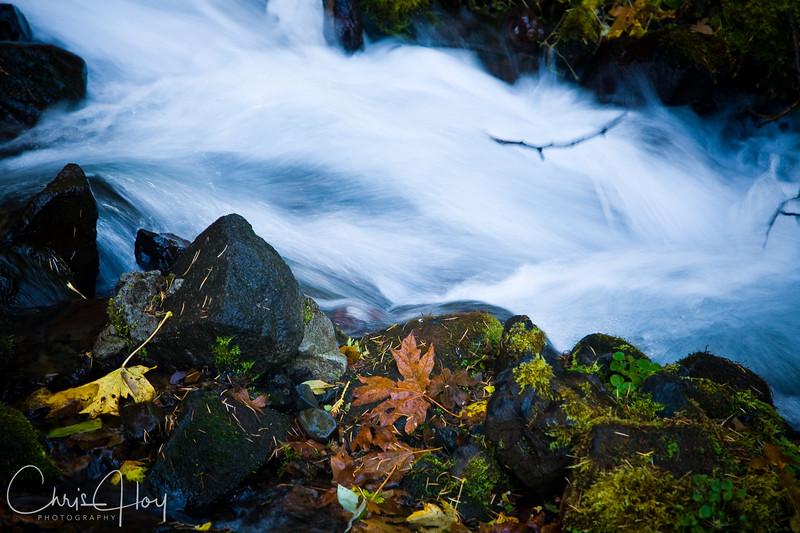 Wahkeena Falls, Columbia Gorge, Oregon8
