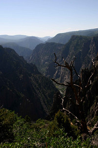 Black Canyon of the  Gunnison 2005/15