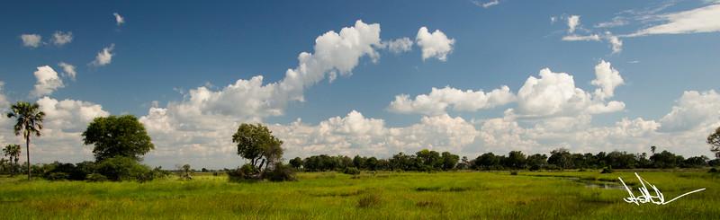 Botswana LandscapeS-1.jpg