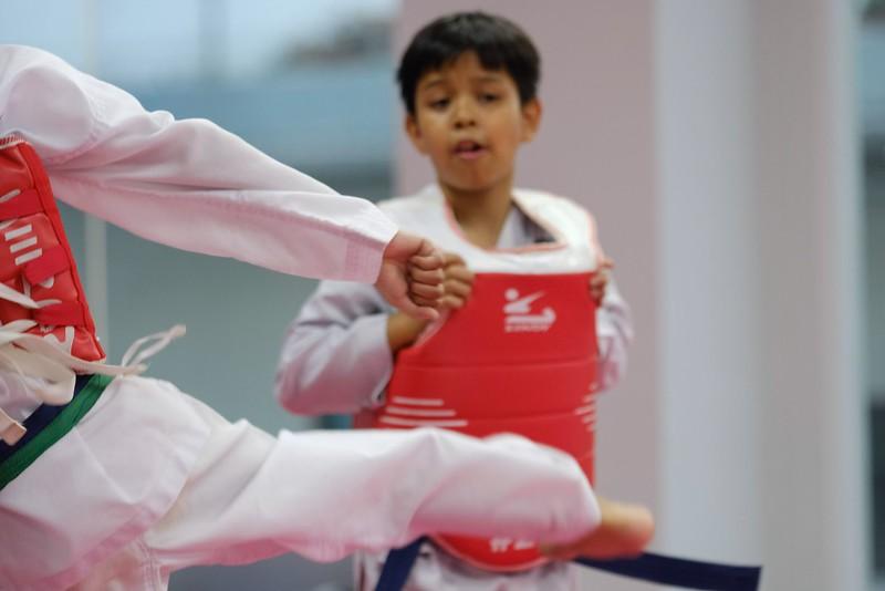 INA Taekwondo Academy 181016 063.jpg