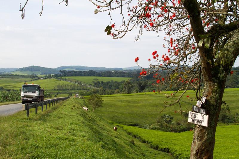 Uganda_GNorton_03-2013-339-2.jpg