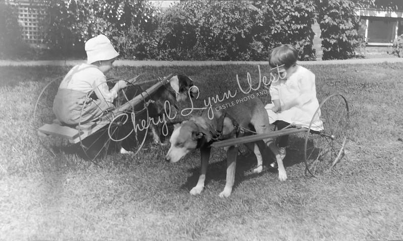 Boy-Girl-Cart-Dogs-3-WM.jpg