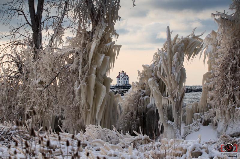 winter 2017-5.jpg