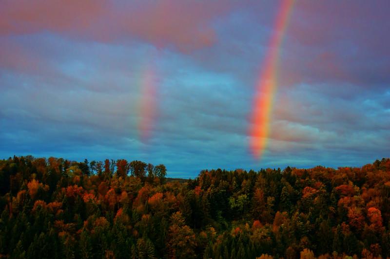 Herbstmorgen mit Regenbogen | Rainbow in Autumn
