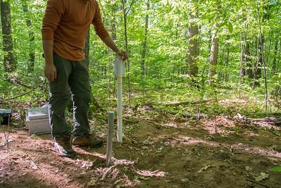 6.5-tree drilling