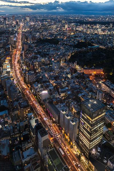 Tokyo Dusk