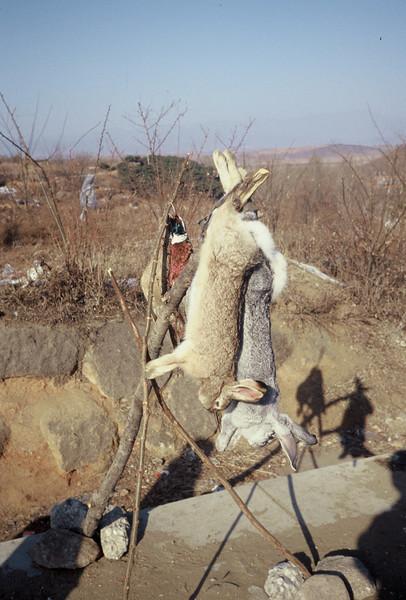 Winter at the Great Wall at Simatai - January 1997 and again 1998