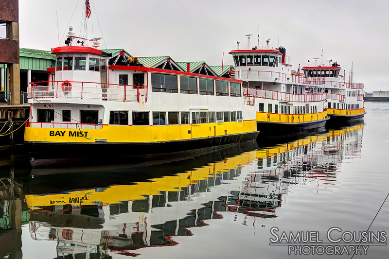 Ferries docked at the Casco Bay Lines.