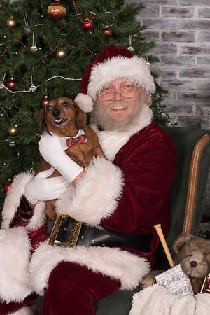 Pets - Santa Party