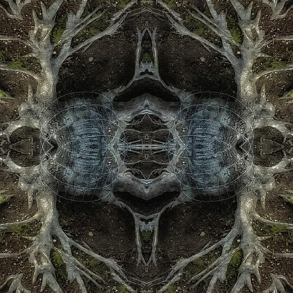 Mirror16-0001 16x16.jpg