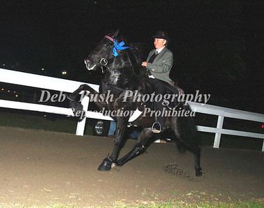 CLASS 30  AMATEUR STAKE - CANTER