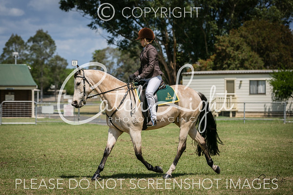 305 CCASH Working over 15hh