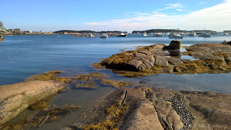 looking out at the harbor, Stonington, Maine
