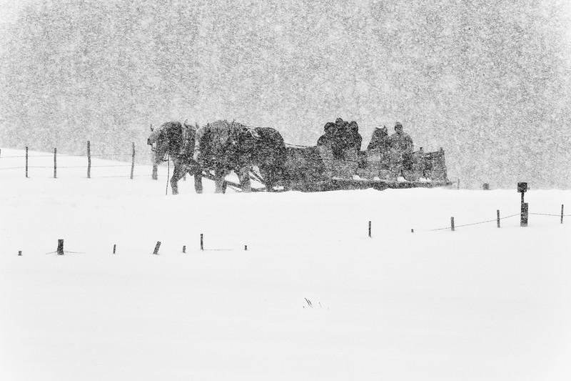 A winter scene at Ashcroft out of Aspen, Colorado