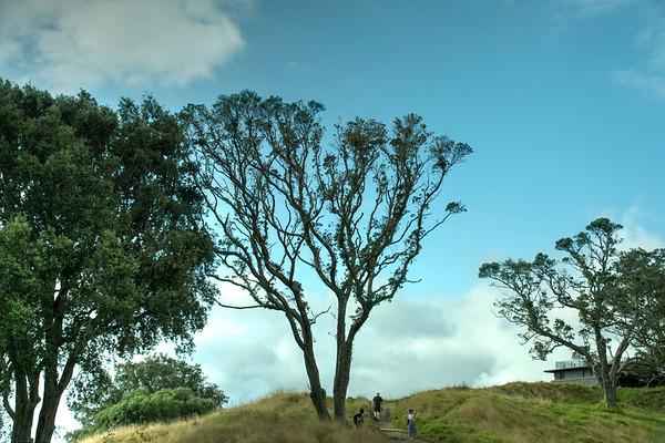 Blog 13-Auckland Tour 1 (AKL1)