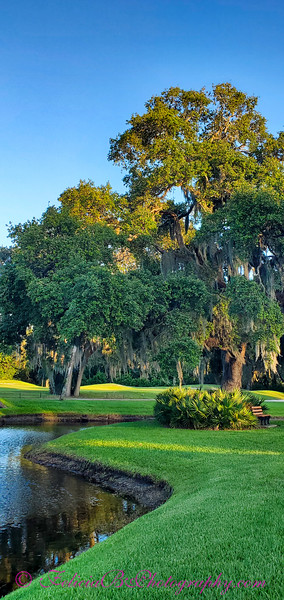 Florida 2021