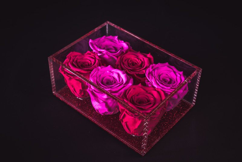 Rose Inspired Valentines Collection-5590.jpg