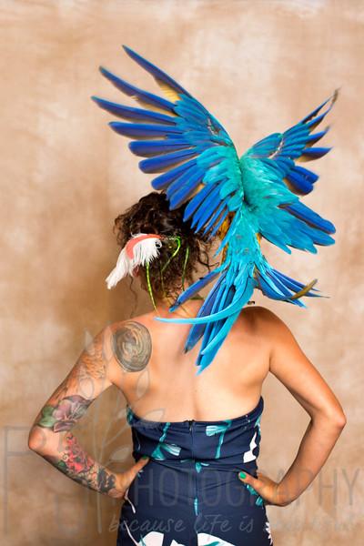 Jessie & Birds