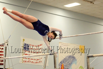 Gymnastics - High School 2008-9
